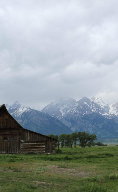 Our Honeymoon, Part Two: Grand Teton National Park