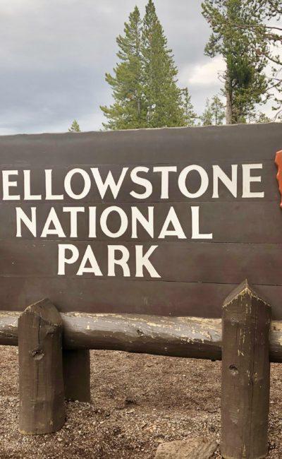 Our Honeymoon, Part Three: Yellowstone